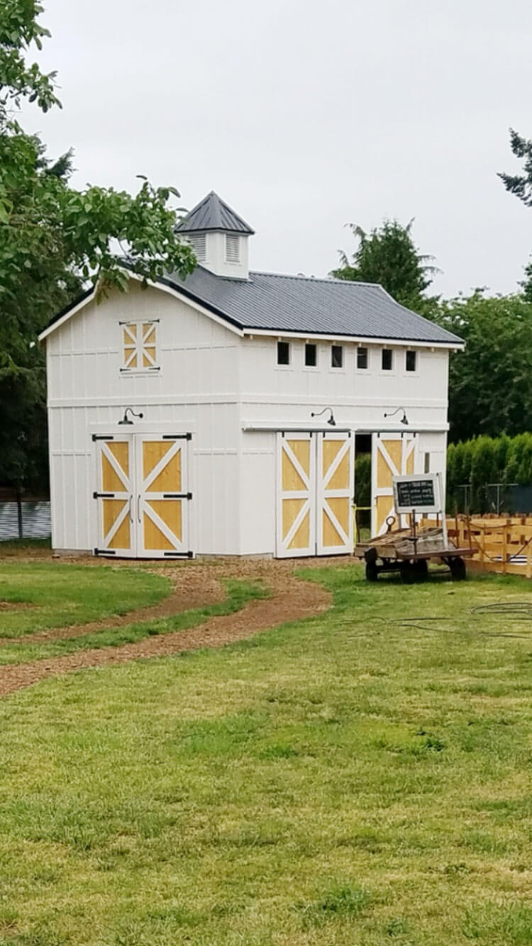 Central-Point-Barn-with-Paintable-Ship-Lap-Smart-Panel-Siding