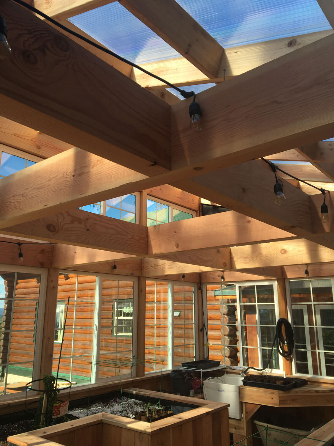 Greenhouse-cedar-ceiling