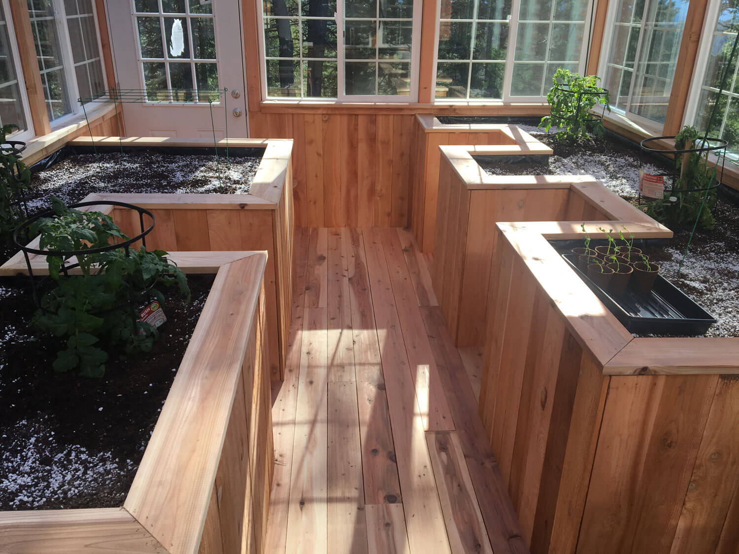 greenhouse-with-cedar-floor-and-raised-beds